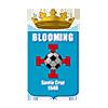 Blooming-BOL