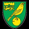 Norwich City-ING